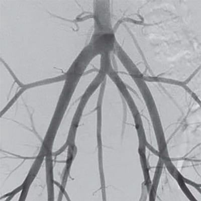 ImexMedical -UniqueFD-Clínica - 17